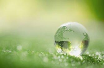 Международные экологические проекты